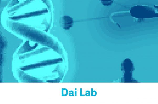 comp lab _2