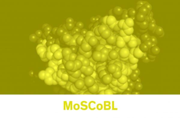 molecular lab