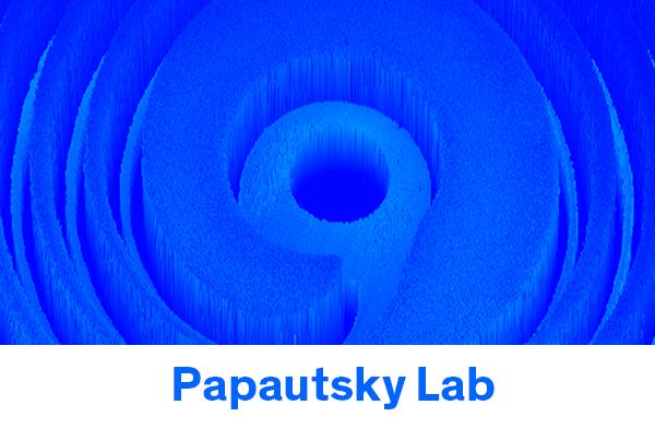 papautsky lab